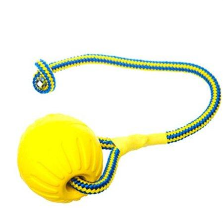 Dog Training Ball with Rope, Indestructible Solid Rubber Exercise Ball Pet Dog Training Chew Play Fetch Bite Toy, Yellow Small ball available at allaboutpets.pk in pakistan.