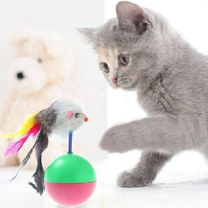 Cat Toy Tumbler Ball With feather Mouse available in pakistan at allaboutpets.pk