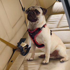 Dog Travel Belt Ferplast, dog travel car seat belt attachment for dogs available at allaboutpets.pk in pakistan.