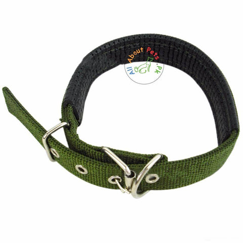Image of Dog Collar Soft Nylon Padded Adjustable Collars army green color available in Pakistan at allaboutpets.pk