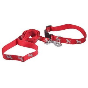 Smart Way Collar & Leash Reflective Dog Print available at allaboutpets.pk in pakistan.
