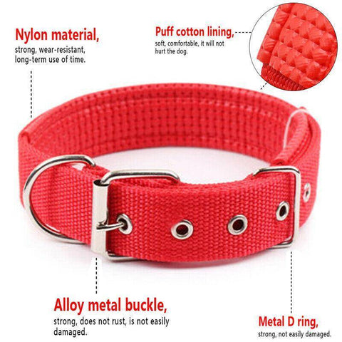 Image of Nylon Soft Liner Padded Dog Collar red color available at allaboutpets.pk in pakistan.