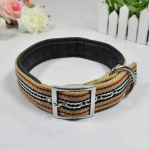 Smart way Padded Collar & leash Titan Flow available at allaboutpets.pk in pakistan.