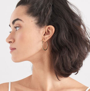 Curb Hoop Earrings
