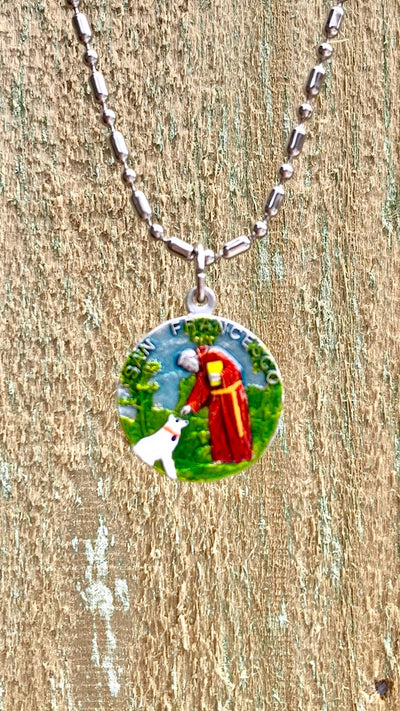 Francis of Assisi, Saint Medal #6, Patron of the Environment, Animal Lovers, Bird Watchers (SOLD OUT!)