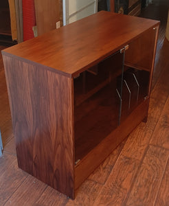 RESTORED MCM Rosewood Media Records TV Console with tinted glass doors
