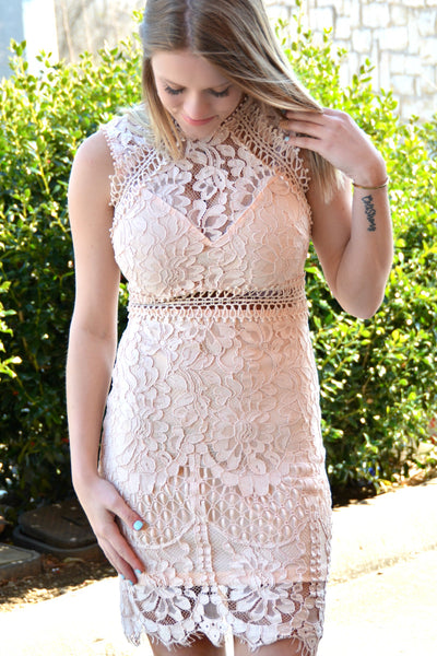 Forever On My Mind Dress - Blush