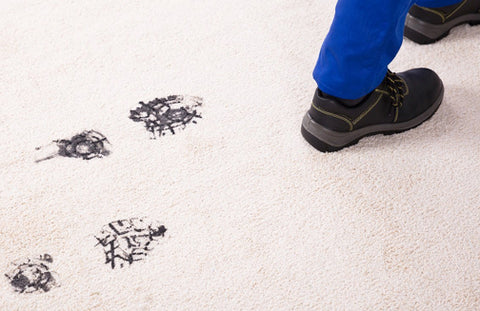 Carpet Cleaners Roeland Park KS