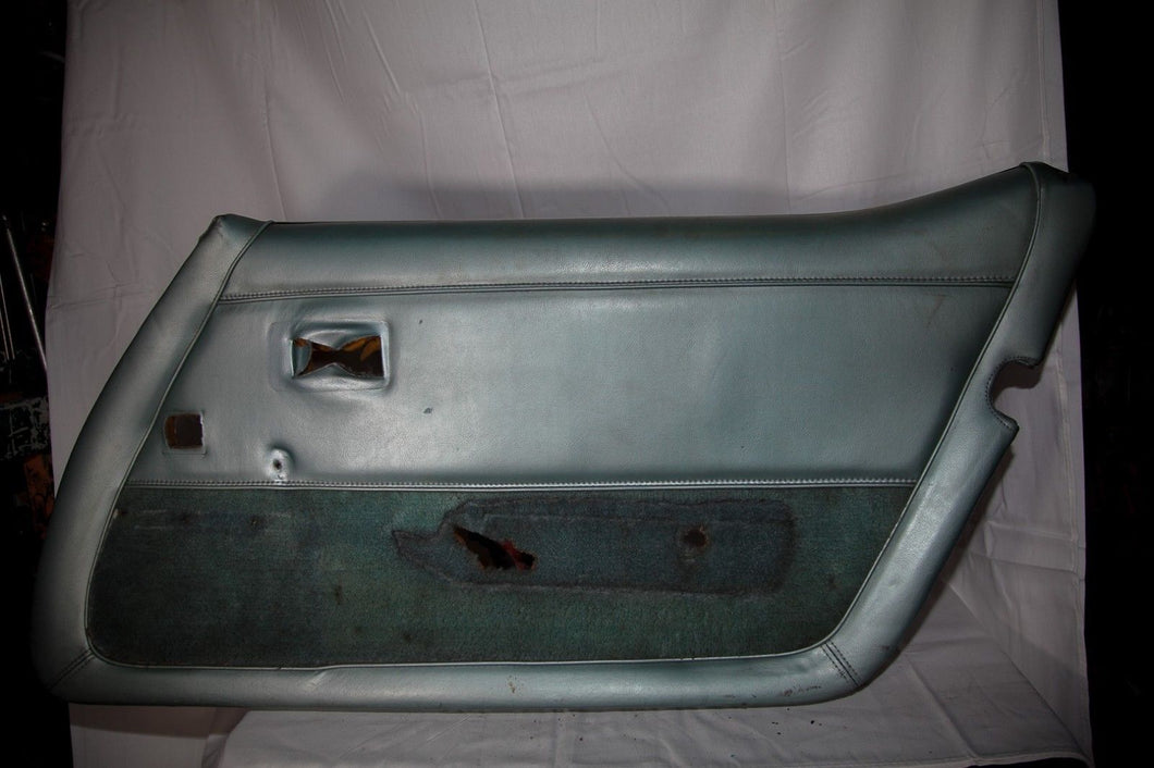 1978-1982 Corvette RH (Passenger) Silver (silvergreen) Door Panel - Original