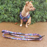Tropical Oasis : Adjustable Harness - Glammah Pooch Boutique