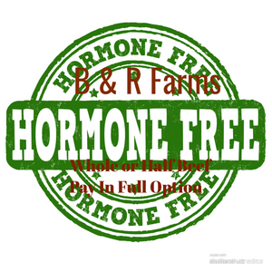 Whole, Half or 1/4 hormone and antibiotic free beef (Pay In Full option)