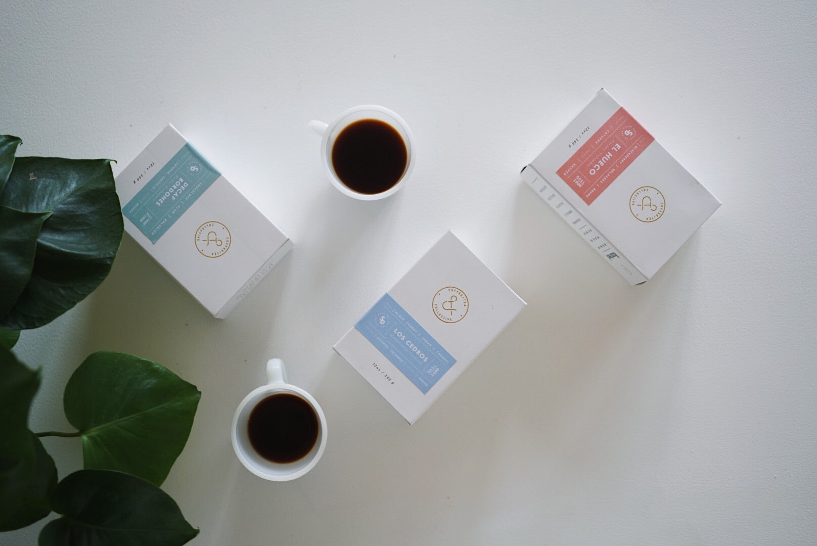 Coffee & Tea Collective