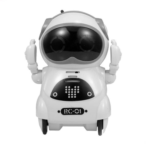 Pocket RC Robot Talking Interactive Dialogue Voice Recognition Record Toys - Colorcome