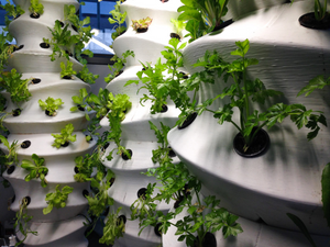 3D Printing Vertical Farms