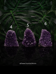 Free Standing Urguayan Amethyst Clusters