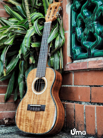 UK-30EVO All Solid Acacia Koa Ukulele