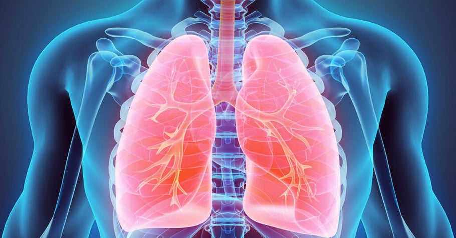 Regenerative Medicine Will Change Treatment for COPD Patients