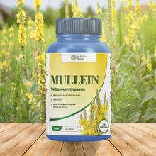 Load image into Gallery viewer, Mullein Capsules