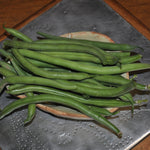 Jade Green Bean (Phaseolus vulgaris)