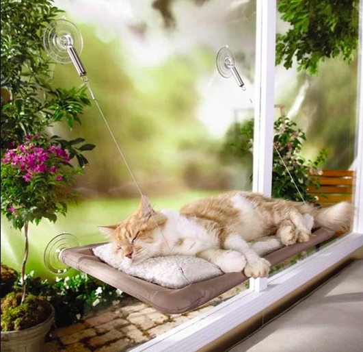 Cat Window Hammock Bed Seat - Project Lvl Online Store