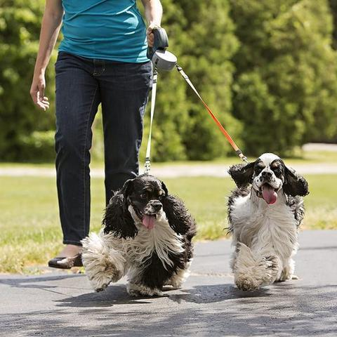 Double Dog Pet Leash Retractable Walking Leash - Project Lvl Online Store