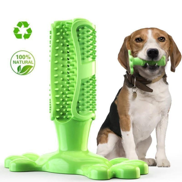 Dog Toothbrush Toy - Project Lvl Online Store