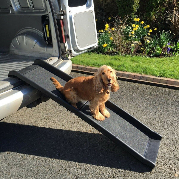 Anti-Skid Pet Ramp for Handicapped, Senior, Small Breed Dogs & More - Project Lvl Online Store