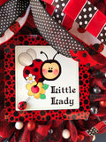 Spring Lady Bug Bubble Wreath, Front Door Decor