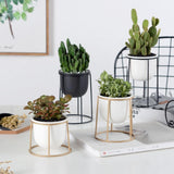 Ceramic Flower Pot Plant With Iron Rack Stand home decoration BANFIY USA