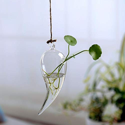 ASMGroup Glass Flower Pots Flower Hanging Vase Glass Planter