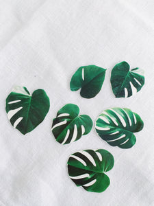 Sophie Clowders botanical monstera palm leaf temporary tattoo for Modern Craft