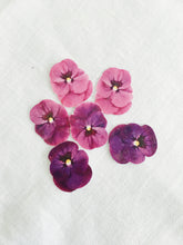 Load image into Gallery viewer, Sophie Clowders viola temporary tattoo botanical petals Modern Craft