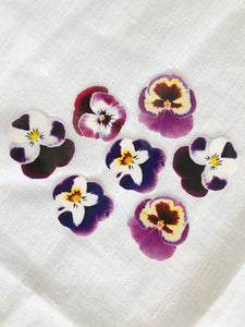 Sophie Clowders botanical pansy petal flower temporary tattoo for Modern Craft