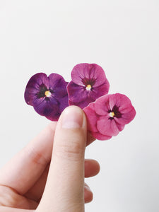 Sophie Clowders viola temporary tattoo botanical petals Modern Craft