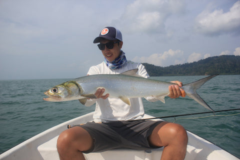 fly fishing langkawi lady fish straits fly shop asia's premier online fly fishing outfitter