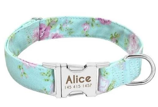 Personalized Dog Collar - Custom Engraved | Paws Night Out