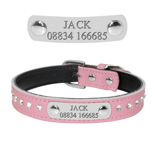 Personalized Custom Engraved Small Dog and Cat Collar - Paws Night Out