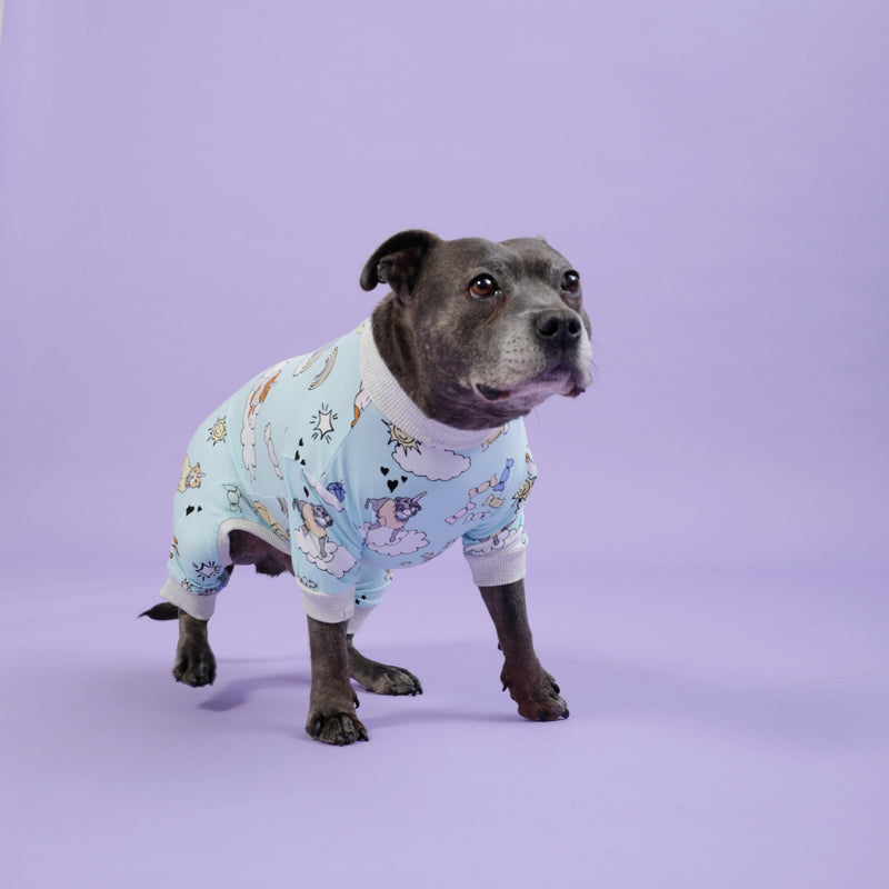 Stafficorns and Rainbows Dog Onesie - Sample Sale
