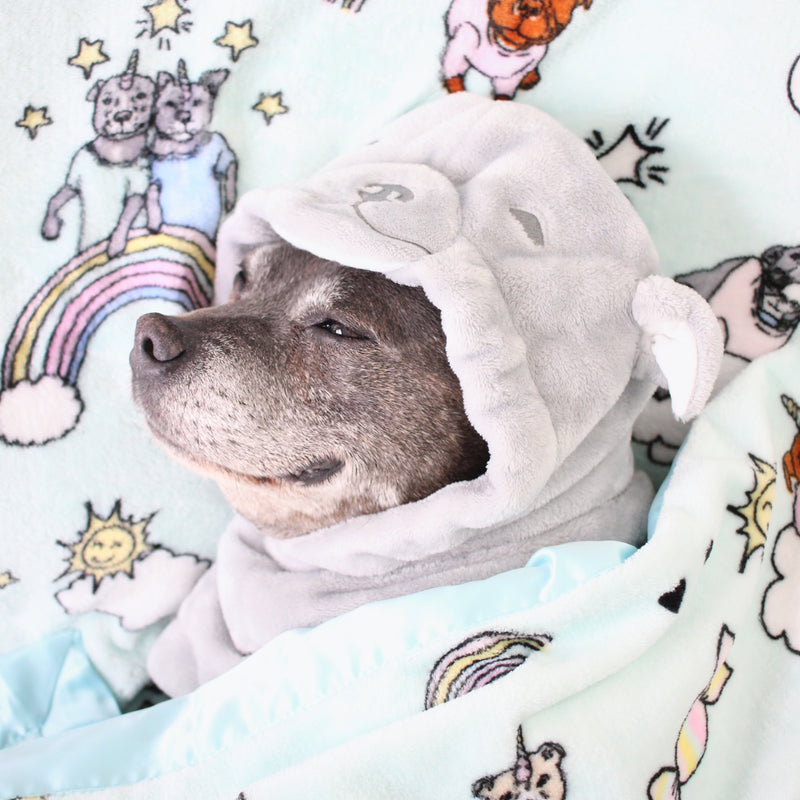 Stafficorn Dog Blanket
