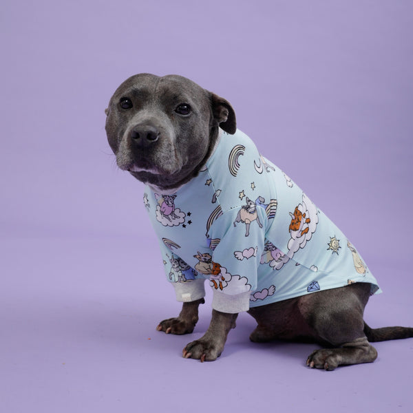 Stafficorns and Rainbows Dog Tee