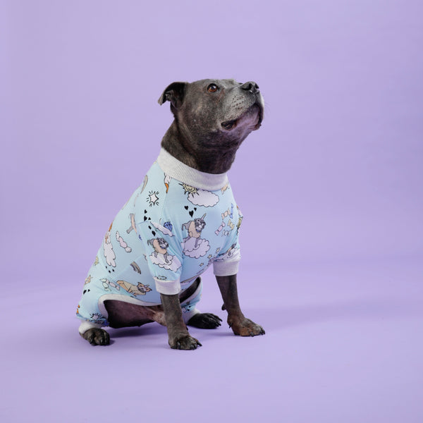 Stafficorns and Rainbows Dog Onesie - SAMPLE