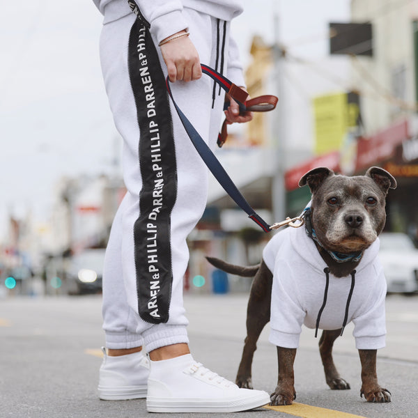 Vision Track Pants