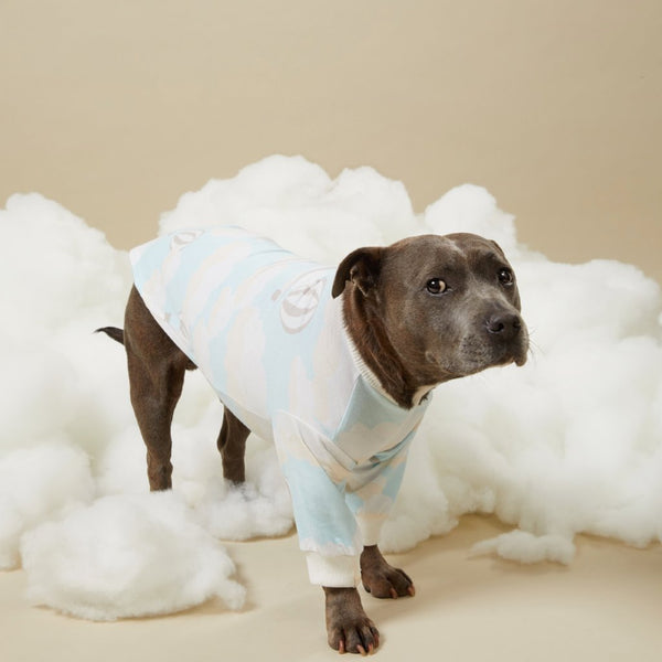 Up in the Clouds dog PJ Tee - Sample Sale