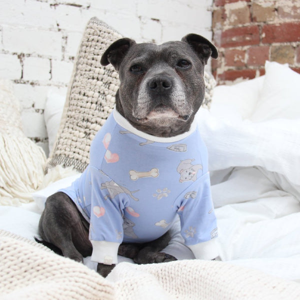 Bedtime Blue Dog PJ Tee - Sample Sale