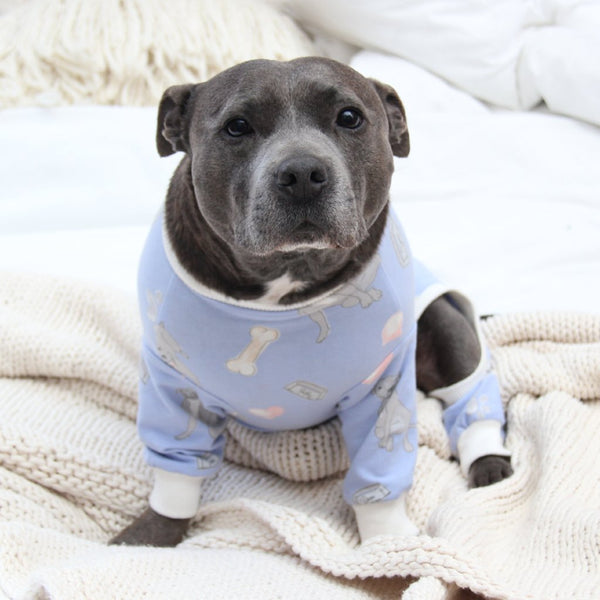 Bedtime Blue Dog Onesie - Sample Sale