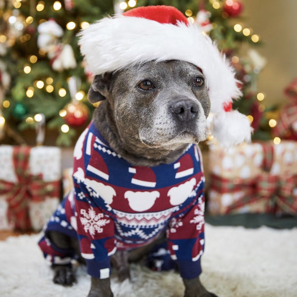 JINGLE BULLIES ONESIE