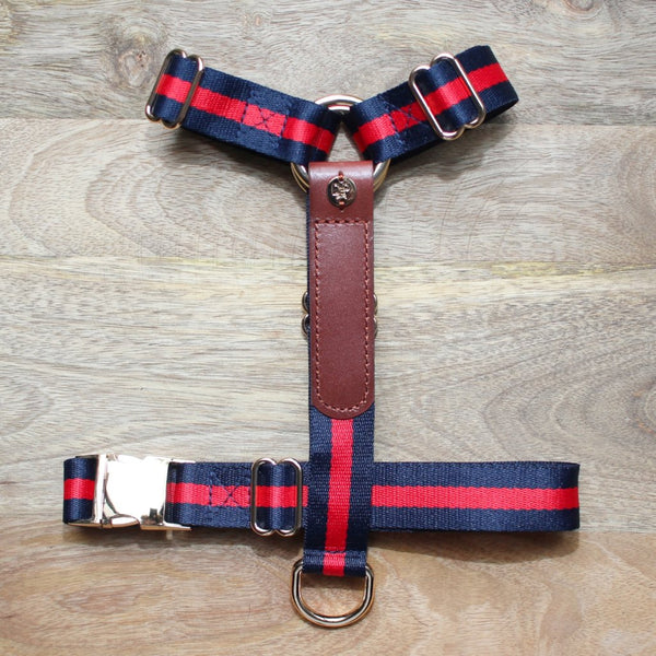 The Classic Harness - Sample Sale