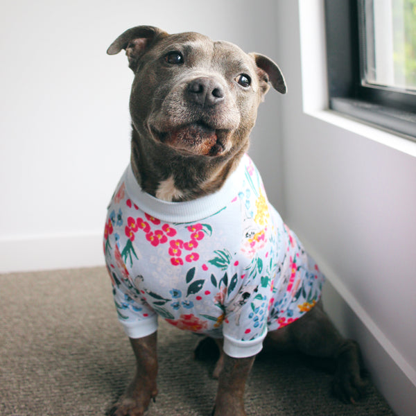 Dazzling Blossoms Dog Tee