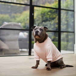 THE CLASSIC SWEAT DOG PINK