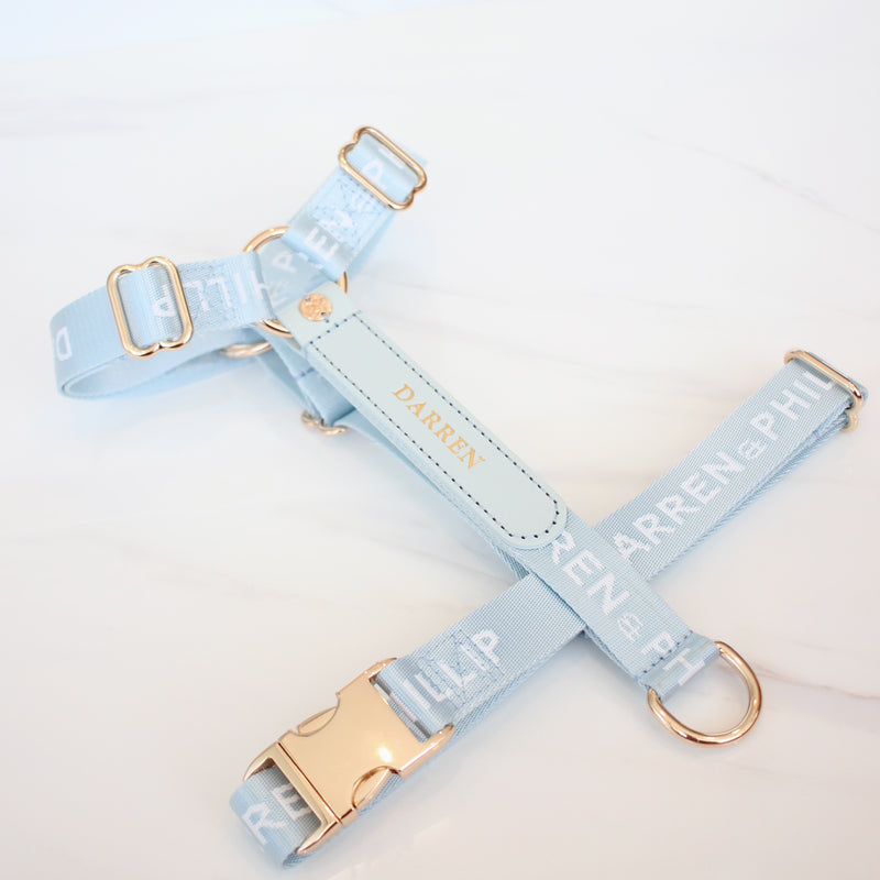 The Louis Harness